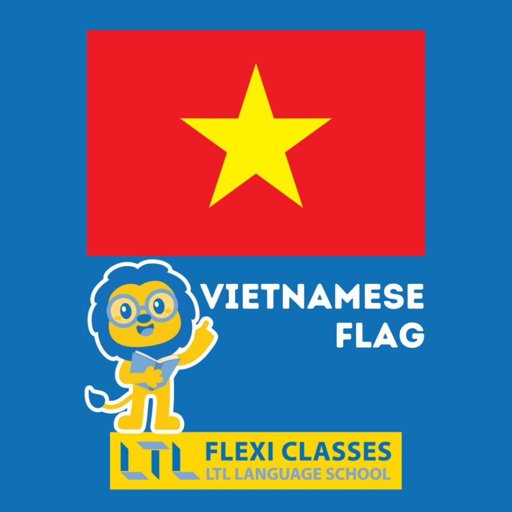 Vietnamese Colors - Flag