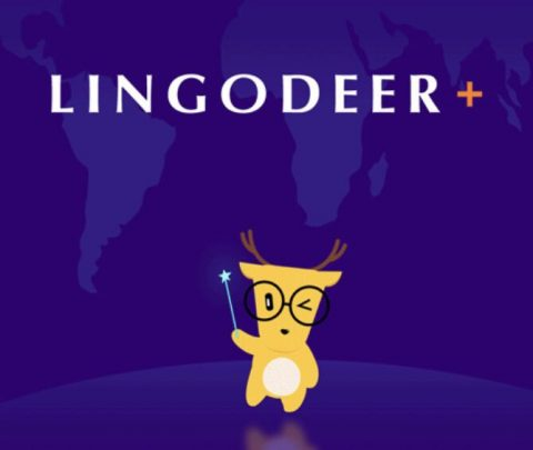 LingoDeer+ Review - Conclusion