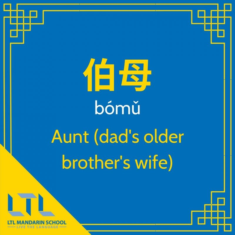The-Farewell-Family-Vocab-aunt